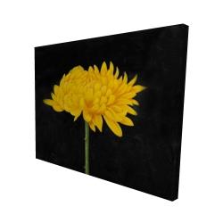 Canvas 48 x 60 - 3D - Chrysanthemum