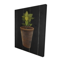 Canvas 48 x 60 - 3D - Plant of bay leaves