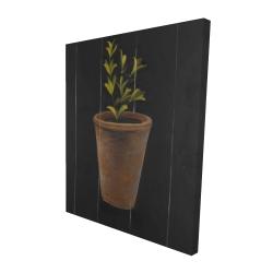 Canvas 48 x 60 - 3D - Plant of marjolaine