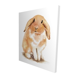 Canvas 48 x 60 - 3D - Lop-rabbit