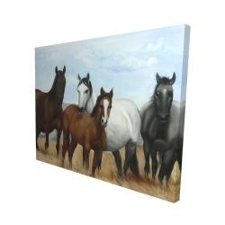 Canvas 48 x 60 - 3D - Horses in the meadow by the sun