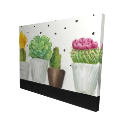 Canvas 48 x 60 - 3D - Mini cactus and succulents