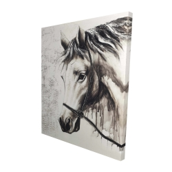 Canvas 48 x 60 - 3D - Alpha the white horse