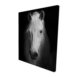 Canvas 48 x 60 - 3D - Monochrome horse