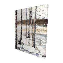 Canvas 48 x 60 - 3D - Winter swamp