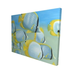 Canvas 48 x 60 - 3D - Butterfly fishes