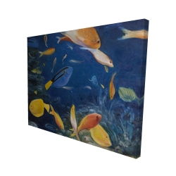 Canvas 48 x 60 - 3D - Colorful fish under the sea