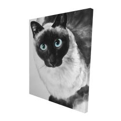Canvas 48 x 60 - 3D - Blue eyes siamese cat