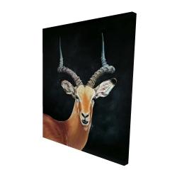 Canvas 48 x 60 - 3D - Antelope