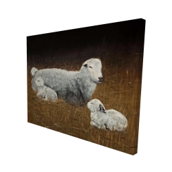 Canvas 48 x 60 - 3D - Sheep and lambs