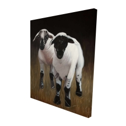 Canvas 48 x 60 - 3D - Two lambs