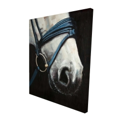 Canvas 48 x 60 - 3D - Horse with harness