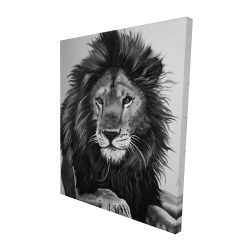 Canvas 48 x 60 - 3D - The lion king