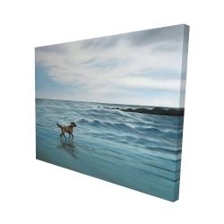 Canvas 48 x 60 - 3D - Dog on the beach