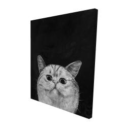 Canvas 48 x 60 - 3D - Watching cat