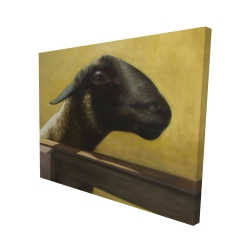 Canvas 48 x 60 - 3D - Young ram