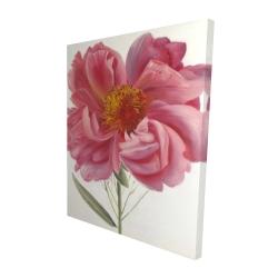 Canvas 48 x 60 - 3D - Pink peony flower