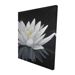 Canvas 48 x 60 - 3D - Lotus flower with reflection