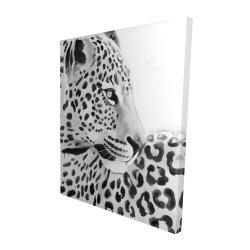 Canvas 48 x 60 - 3D - Beautiful leopard