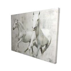 Canvas 48 x 60 - 3D - Two white horse running