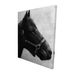 Canvas 48 x 60 - 3D - Gallopin the horse