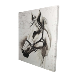 Canvas 48 x 60 - 3D - Flicka the white horse