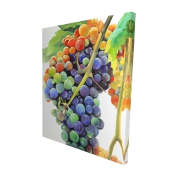 Canvas 48 x 60 - 3D - Colorful bunch of grapes