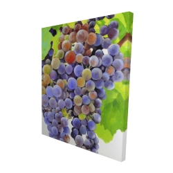 Canvas 48 x 60 - 3D - Bunch of grapes