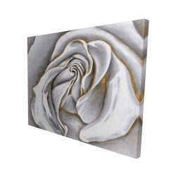 Canvas 48 x 60 - 3D - White rose delicate
