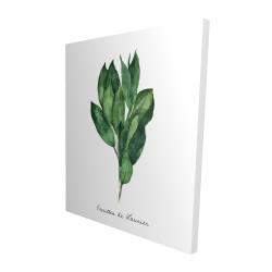 Canvas 48 x 60 - 3D -  bay leaves bundle - fr
