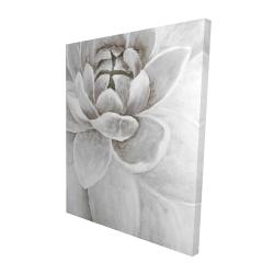 Canvas 48 x 60 - 3D - Delicate white chrysanthemum