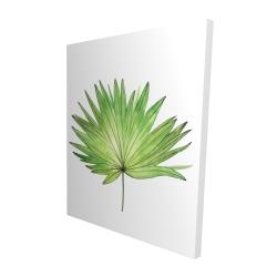 Canvas 48 x 60 - 3D - Petticoat palm