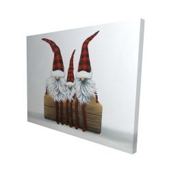 Canvas 48 x 60 - 3D - Three christmas gnomes