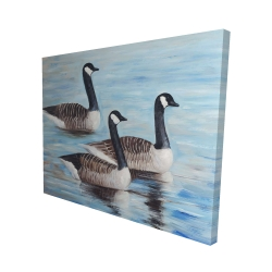 Canvas 48 x 60 - 3D - Canada geese in water