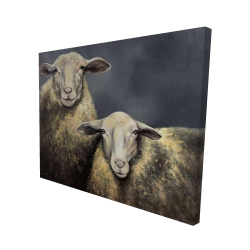 Canvas 48 x 60 - 3D - Two sheeps