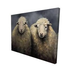 Canvas 48 x 60 - 3D - Wool sheeps