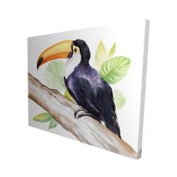 Canvas 48 x 60 - 3D - Toucan perched