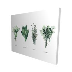 Canvas 48 x 60 - 3D - Fine herbs