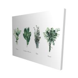 Canvas 48 x 60 - 3D - Fines herbes