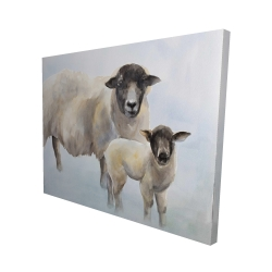 Canvas 48 x 60 - 3D - Sheep and its baby