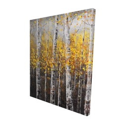 Canvas 48 x 60 - 3D - Sunny birch trees