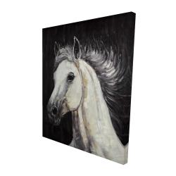 Canvas 48 x 60 - 3D - White star horse