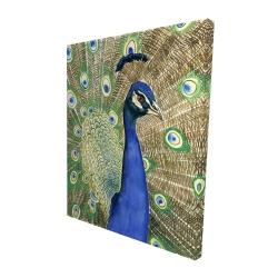Canvas 48 x 60 - 3D - Peacock