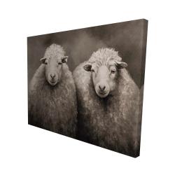 Canvas 48 x 60 - 3D - Sheep sepia