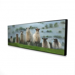 Framed 16 x 48 - 3D - Flock of sheep