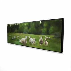 Framed 20 x 60 - 3D - Fields of sheep