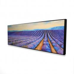 Framed 16 x 48 - 3D - Lavender fields
