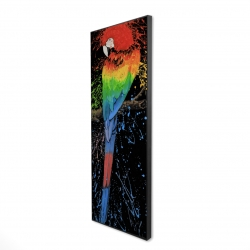 Framed 16 x 48 - 3D - Rainbow parrot