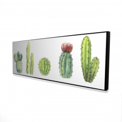 Framed 16 x 48 - 3D - Tiny cactus set