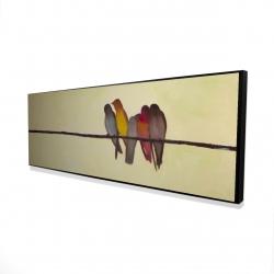 Framed 16 x 48 - 3D - Five birds on a branch
